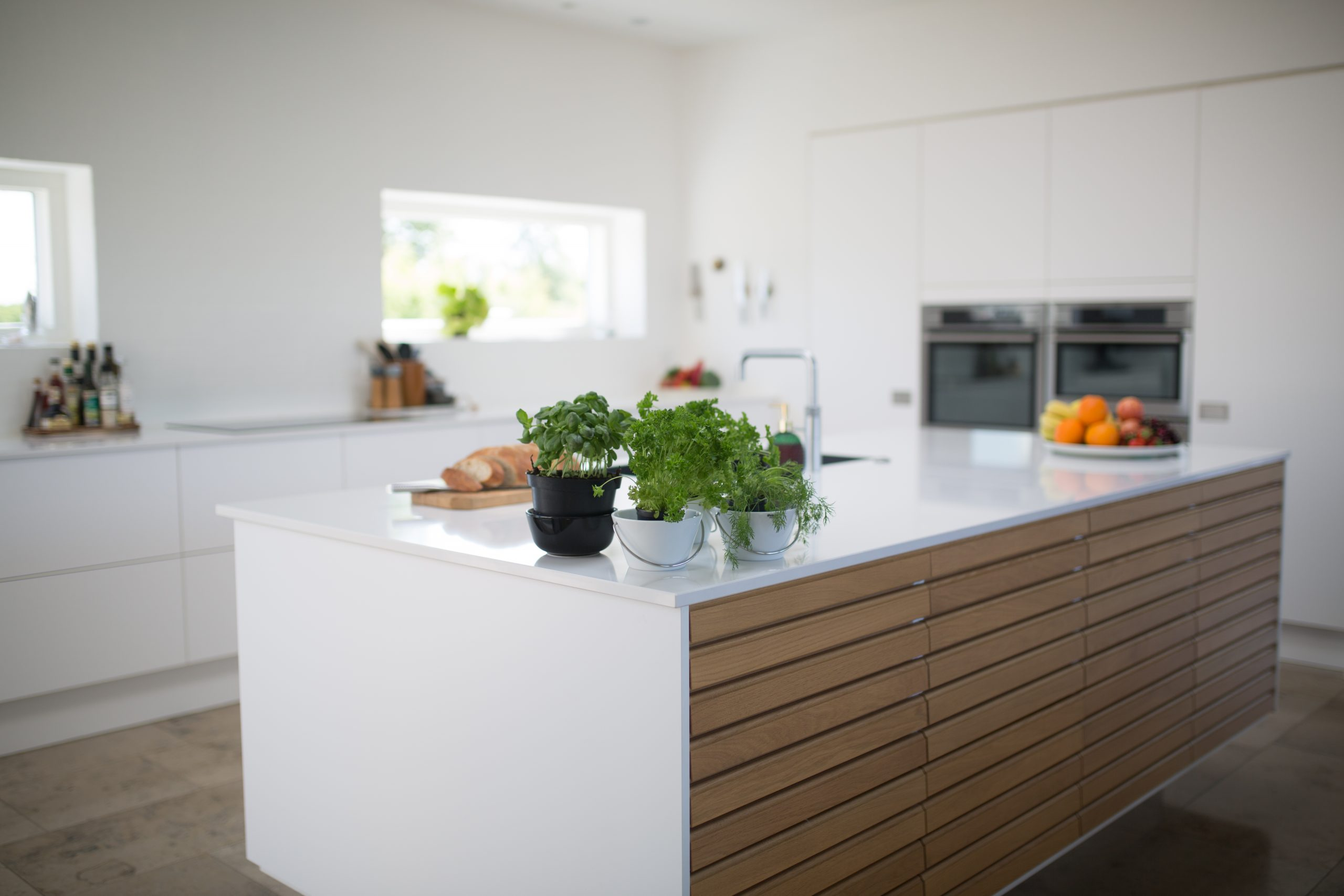Canva - Green Leafed Plants On Kitchen Island